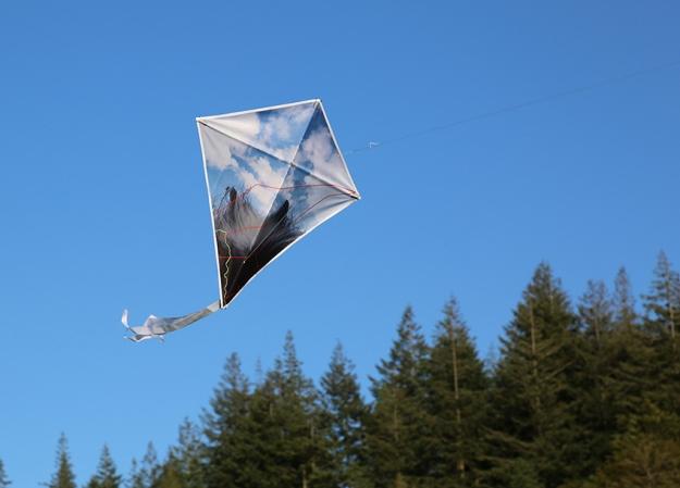 diamondflying2
